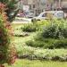 Propunere inedită la Pașcani: Adoptă un spațiu verde - pentru înfrumusețarea zonei